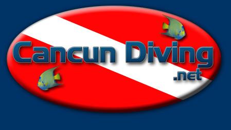 Cancun Diving - Your Cancun Scuba Diving Adventure Begins Here! Cancun Diving Packages, Dive Tours, & beginner Scuba Lessons