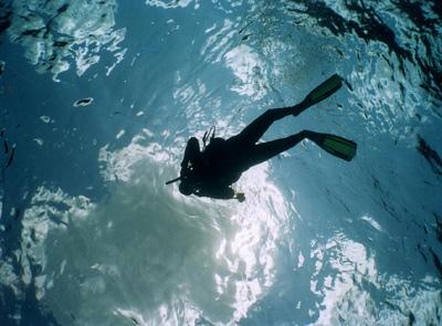 Cancun Scuba Diving